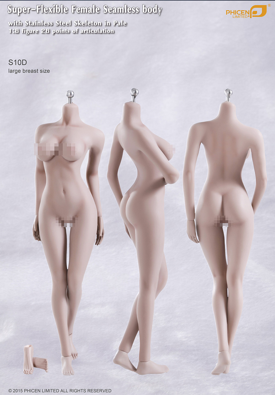 Phicen - Seamless Stainless Steel Skeleton Female Body in Pale - Large Breast Size - Replaceable hands/feet