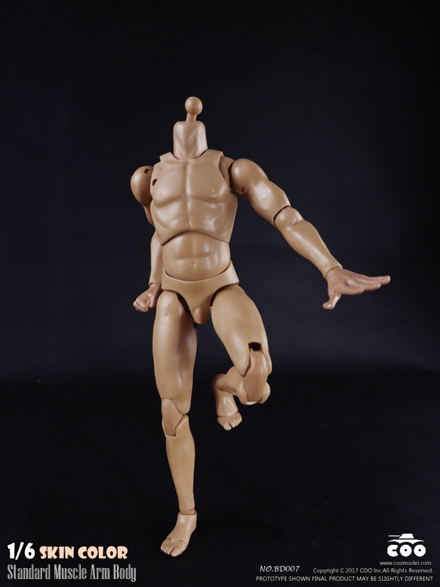 COO Model - Standard Muscle Arm Body