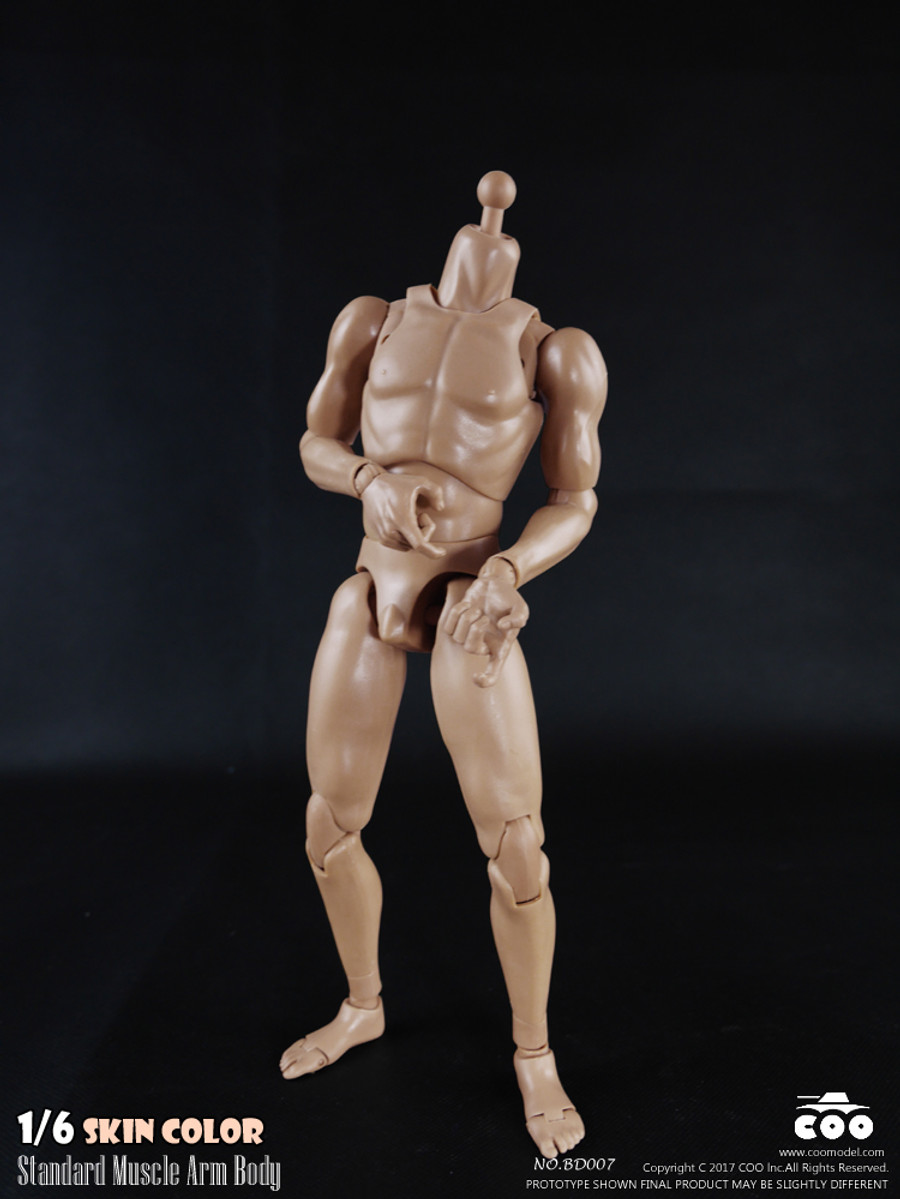 COO Model - Standard Muscle Arm Body - Tall