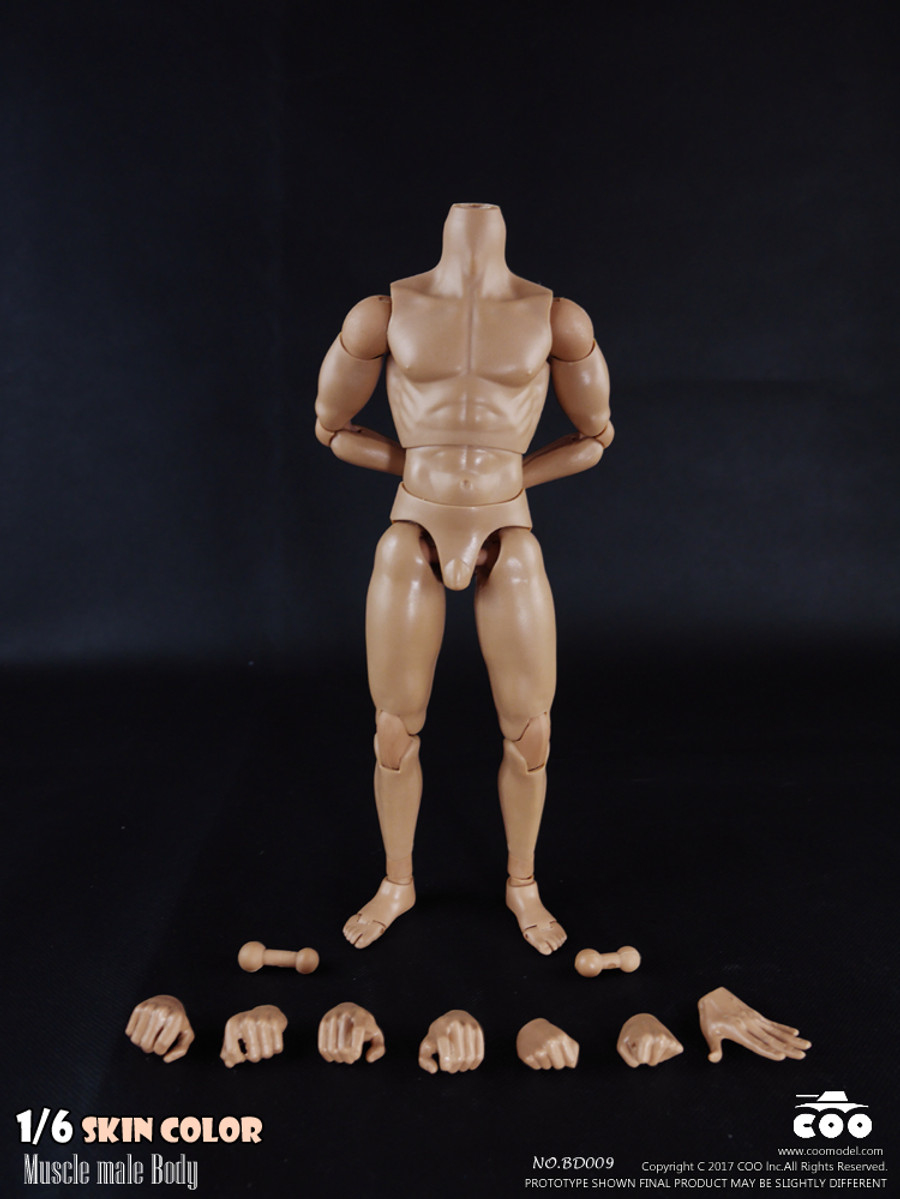 COO Model - Muscle Male Body