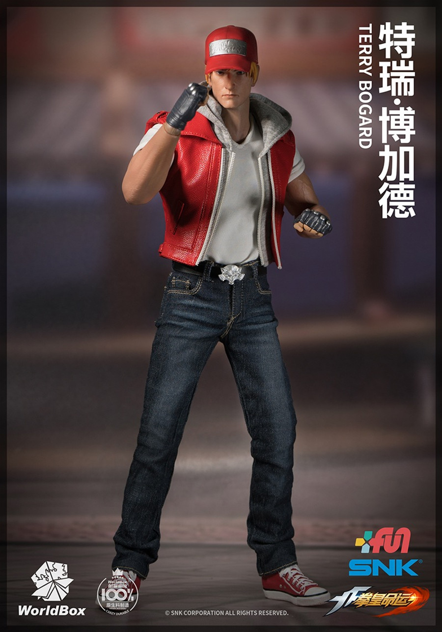 World Box - The King of Fighters Terry Bogard