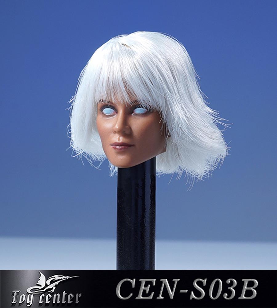 Toys Center - Female Headsculpt with White Hair