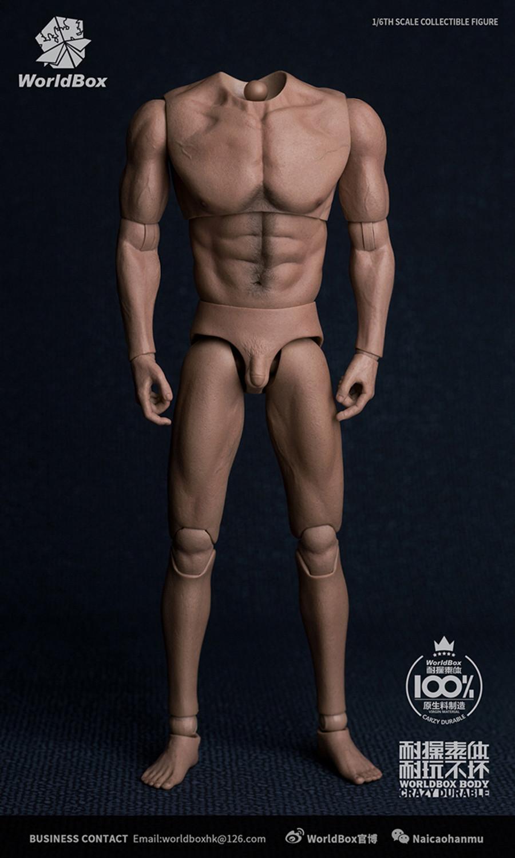 World Box - WB-AT017 Universal Body
