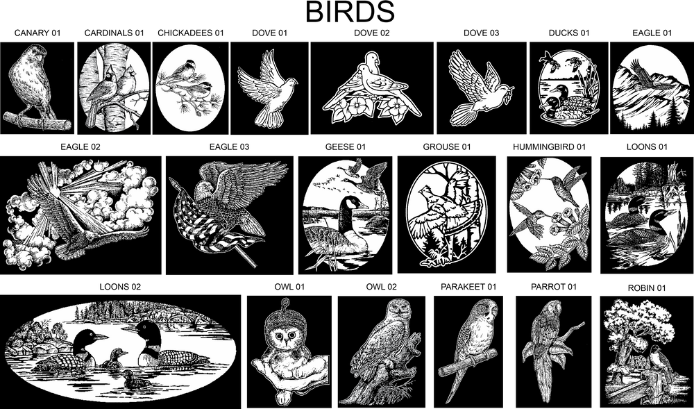 Bird Artwork Choices