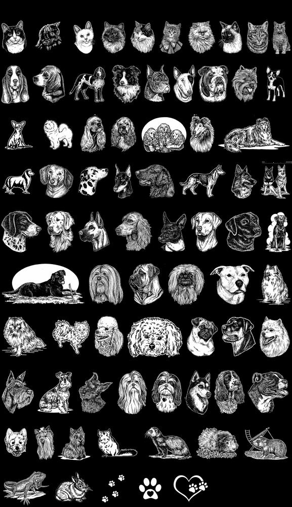 Pet Artwork Choices