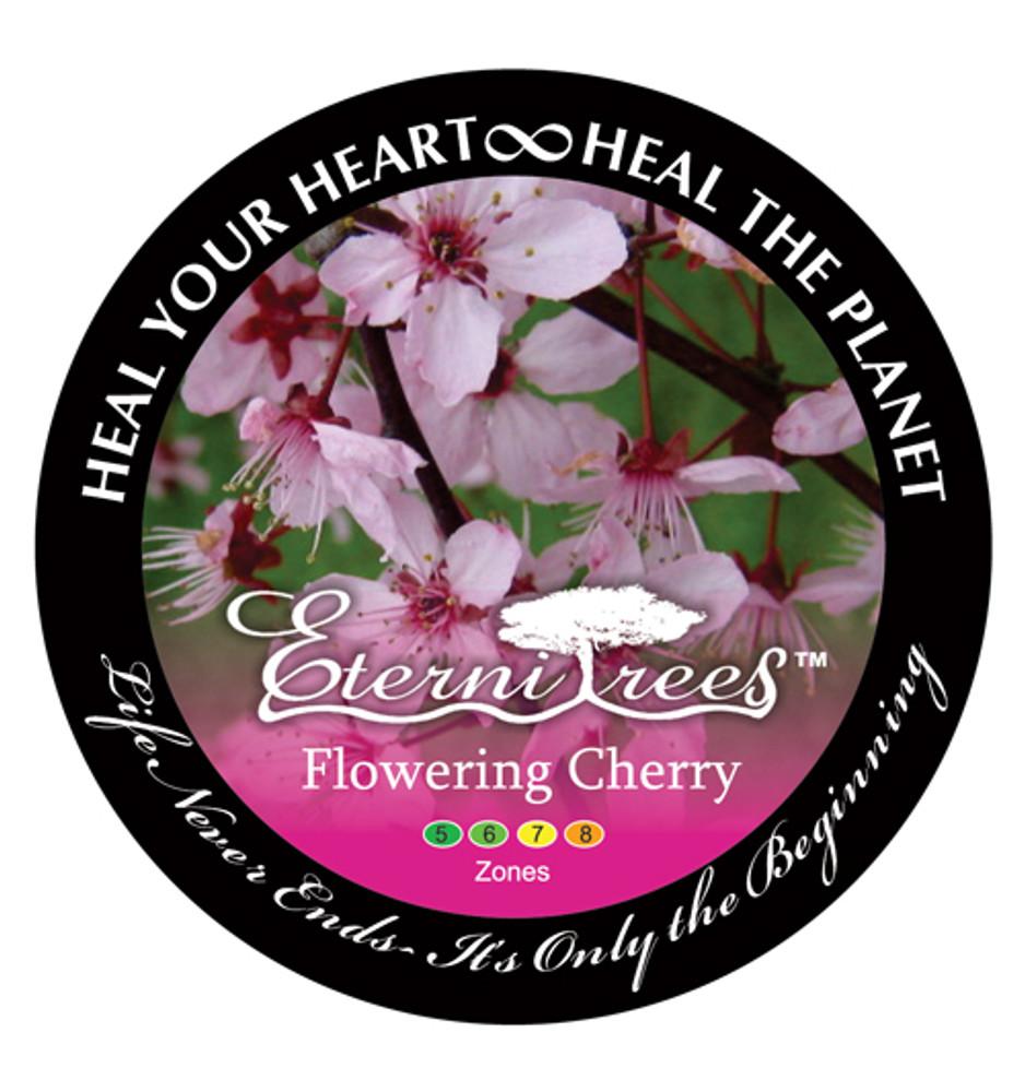 Biodegradable Memorial Tree Urns | Flowering Cherry