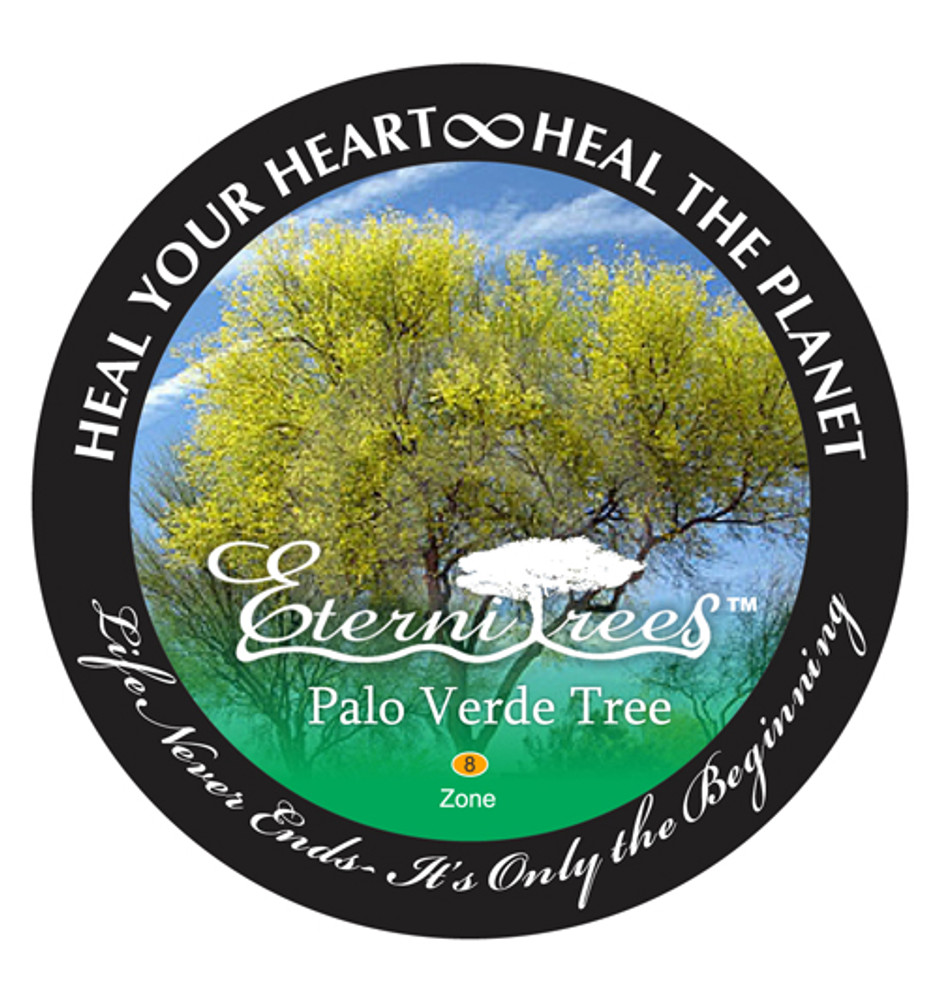 Biodegradable Memorial Tree Urn | Palo Verde Tree