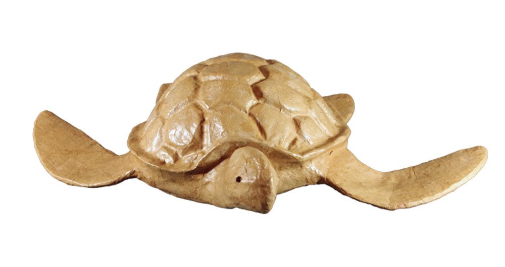 Biodegradable Turtle Urn - Front View