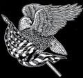 Urn Artwork | American Eagle