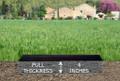 Personalized Granite Grave Marker - Depth Chart