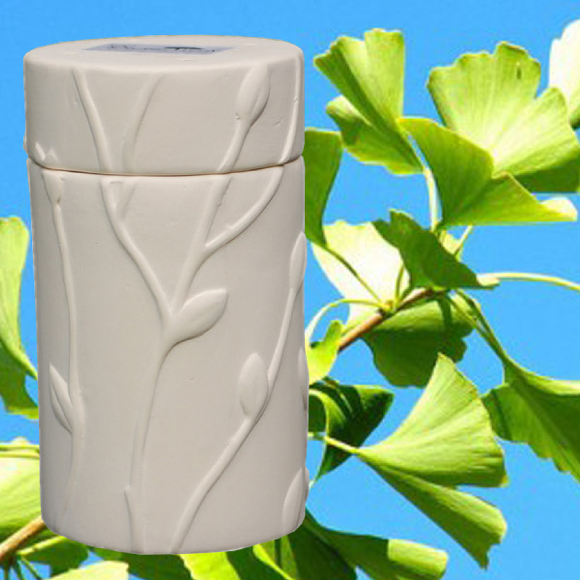 Biodegradable Memorial Tree Urns Ginkgo Biloba