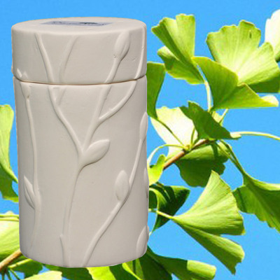 Biodegradable Memorial Tree Urn - Ginkgo Biloba