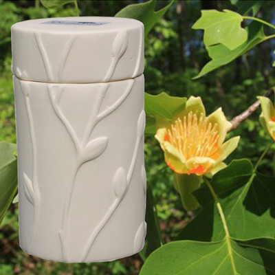 Tulip Poplar Memorial Tree Urn