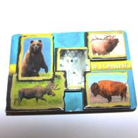 3D Animal Magnet (12-008-0089)