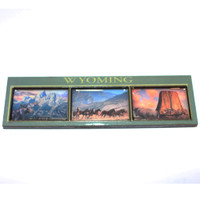 3D Wyoming Magnet (12-008-0194)