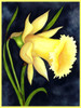 """Home Decor Giclee Canvas Print+1-1/2""""  Gallery Stretching: 100% Cotton Canvas  : 48x72-Part2"""