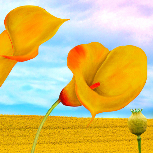 """Home Decor Giclee Canvas Print+1-1/2""""  Gallery Stretching: 100% Cotton Canvas  : 48x72-Part5"""