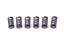 Buy Heavy Duty Clutch Spring Kit Hayabusa (99-07) SKU: 270253 at the price of US$  39.99 | BrocksPerformance.com