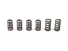 Buy Clutch Cushion Kit Replacement Springs Hayabusa (99-20) 270448 at the best price of US$ 39.99 | BrocksPerformance.com