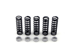 Buy Clutch Spring Kit w/ .280 Thick Spacer ZX-14 (06-11) 270162 at the best price of US$ 59.99 | BrocksPerformance.com