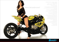 "Buy Heather on Brock's Performance Dragbike 24 x 17"" 600097 at the best price of US$ 4.99 