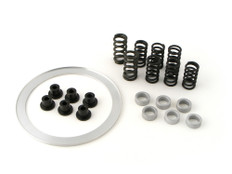 Buy Clutch Cushion Kit ZX-10R (04-20) 270617 at the best price of US$ 199 | BrocksPerformance.com
