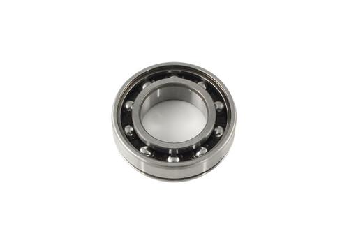 Steel Cam Bearing Hayabusa (99-20)