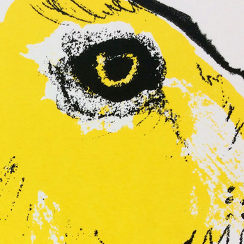 Yellow Hare screen print detail by Tiff Howick at Of Cabbages and Kings