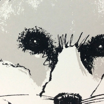 Silver Fox screen print detail by Tiff Howick at Of Cabbages and Kings.