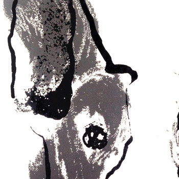 Bull Terrier screen print detail by Tiff Howick at Of Cabbages and Kings.