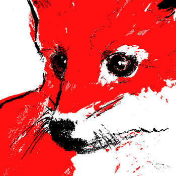 Red Fox Cub screen print detail by Tiff Howick at Of Cabbages and Kings.