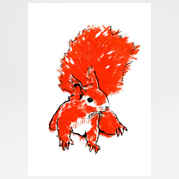 Orange Squirrel screen print by Tiff Howick at Of Cabbages and Kings.