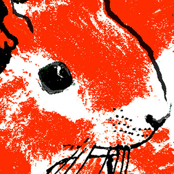 Orange Squirrel screen print detail by Tiff Howick at Of Cabbages and Kings.