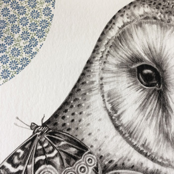 The Owl And The Butterfly art print detail 01 by Lauren Mortimer at Of Cabbages and Kings.