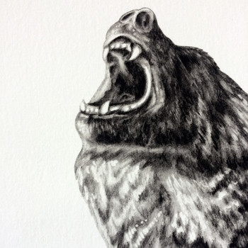 Bear With Me (Special Edition) art print detail 01 by Lauren Mortimer at Of Cabbages and Kings