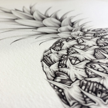Papillion Pineapple art print detail 02 by Lauren Mortimer at Of Cabbages and Kings