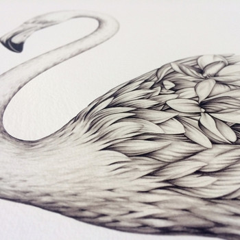 Flora Flamingo art print detail 02 by Lauren Mortimer at Of Cabbages and Kings