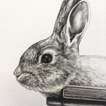 Gun Bunny art print detail 04 by Lauren Mortimer at Of Cabbages and Kings.