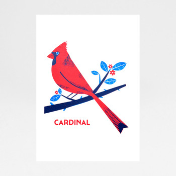 Cardinal screen print by Chris Andrews at Of Cabbages and Kings