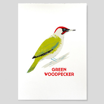 Green Woodpecker screen print on grey by Chris Andrews at Of Cabbages and Kings