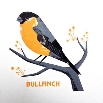 Bullfinch screen print detail by Chris Andrews at Of Cabbages and Kings