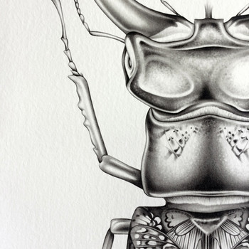 Butterfly Beetle art print detail 01 by Lauren Mortimer available at Of Cabbages and Kings.
