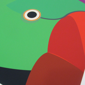 Ring Necked Parakeet Art Print detail 01 by Julio Guerra at Of Cabbages and Kings