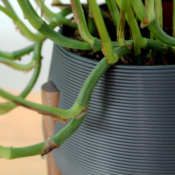Dark Grey Tall Legged Planter by Studio Nilli close up at Of Cabbages and Kings