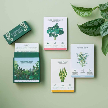 House Plant Care Cards by Another Studio at Of Cabbages & Kings