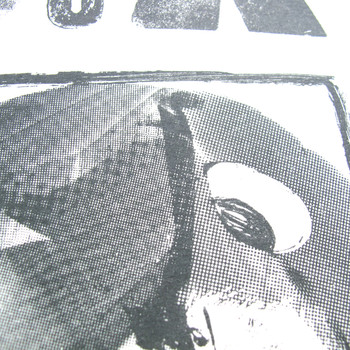 Crow In A Box eye detail by Factory Press at Of Cabbages and Kings