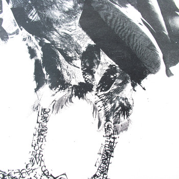 Cormorant and Fish screen print feet detail by Factory Press at Of Cabbages and Kings