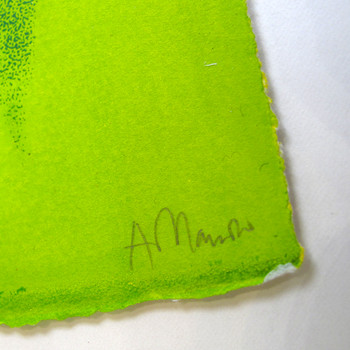 Gold Top screen print detail 02 by Anna Marrow at Of Cabbages and Kings