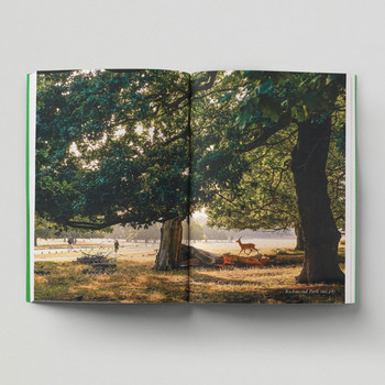 An Opinionated Guide To London Green Spaces open book 7 by Hoxton Mini Press at Of Cabbages and Kings