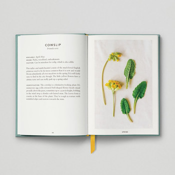 The Urban Forager Book Cowslip by Hoxton Mini Press at Of Cabbages and Kings